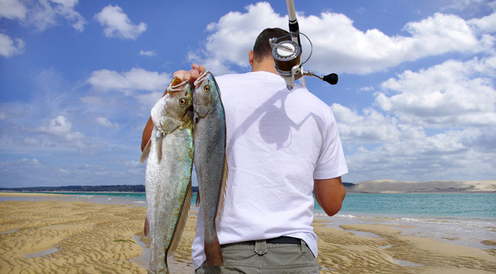 best surf fishing reels